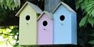 Bird, Bug and Bat box making