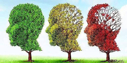 Cervello e benessere nell'Anziano
