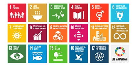 Embed The SDGs into Your Classroom. LfS, Global Citizenship and Rights Ed. tickets