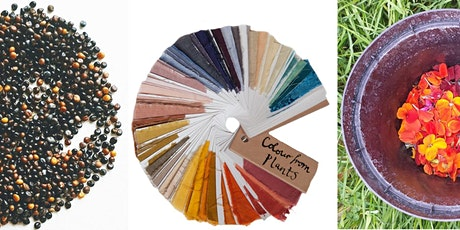 Lewisham Arts Hub Natural Dyes Workshop  tickets