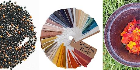 Lewisham Arts Hub Natural Dyes Workshop  tickets