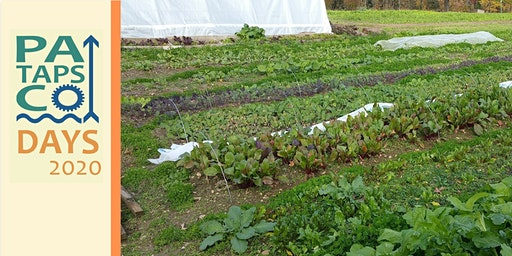 Myrtle Woods Farm Tour: A Woman-Owned Agricultural Cooperative