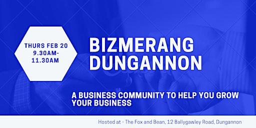 Bizmerang Dungannon Launch Event