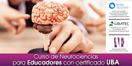 Curso de Neurociencias para Educadores con certificado UBA entradas
