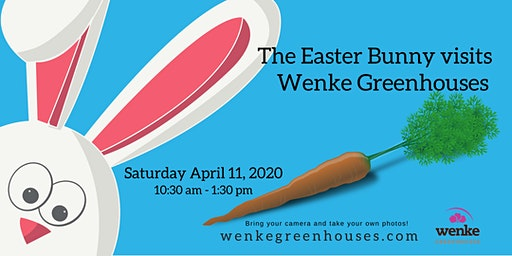 The Easter Bunny visits Wenke Greenhouses