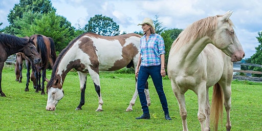 Introduction to Horse Wisdom Workshop–February 23, 2020