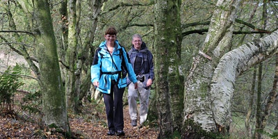 Gritstone Trail Explorer Walks 2020 - Raven's Clough Ramble to Chapel in the Wilderness