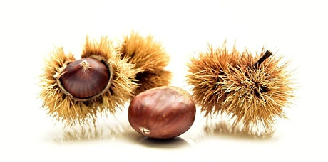 Sweet Chestnuts at Lesnes Abbey + Tree Pests, Diseases & Biosecurity tickets