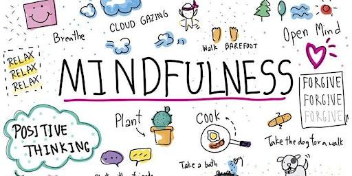 Incontro con la Mindfulness