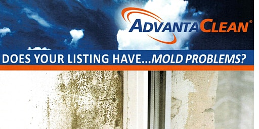 3 HR CE Mold Remediation with AdvantaClean