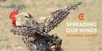 Spreading Our Wings: CAA's Annual Banquet