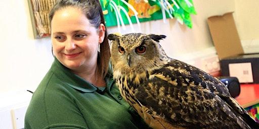 Hoglets Owl meet & paint