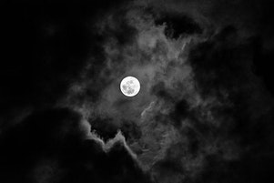 Full Moon Hike and Seed Exchange