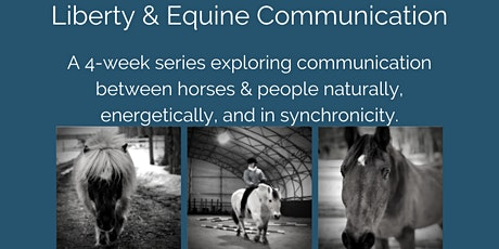 Liberty & Equine Communication tickets