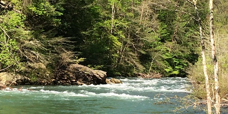 Snorkeling at Whites Creek Gorge tickets