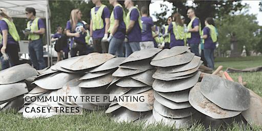 Volunteer: Community Tree Planting - GWU Mount Vernon Campus