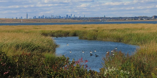 Spring Fling! Queens: Jamaica Bay Wildlife Refuge Photography & Nature Walk with NYC Wild!
