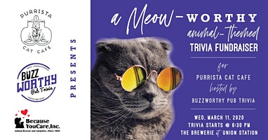 BuzzWorthy + Purrista Pub Trivia  Fundraiser