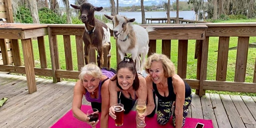Goat Yoga Tampa plus free drink! In the Loop Brewing, Land O Lakes; 4/19/20