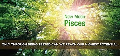 New Moon Pisces Lecture / Nieuwe Maan Vissen lezing tickets