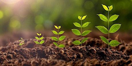 Conferencia de Plantación y Crecimiento 2020 boletos
