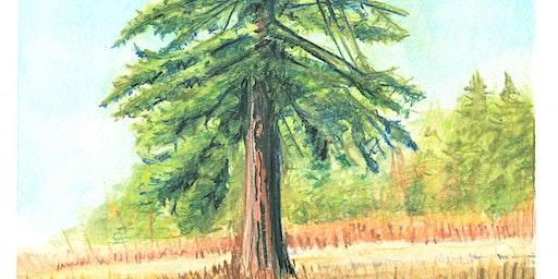 How to paint trees en plein air