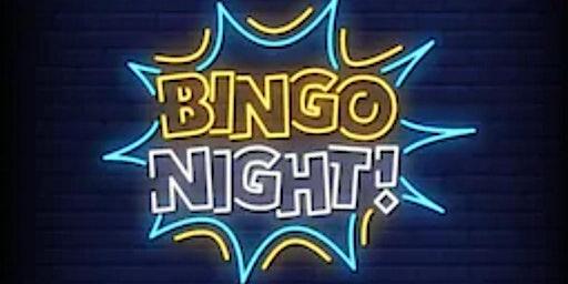 Audubon Elementary PTO presents: BINGO Night Out!