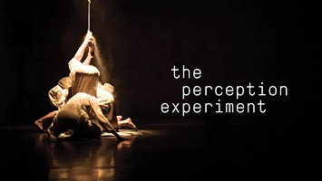 the perception experiment