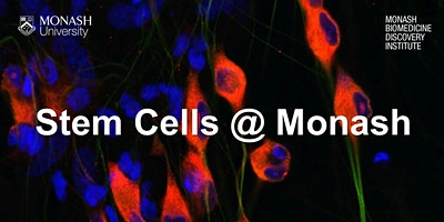 Stem Cells @ Monash
