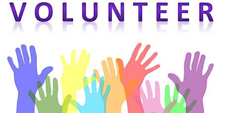 Volunteer Day tickets