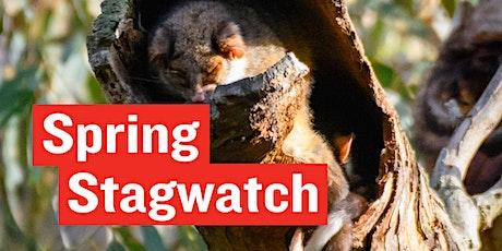 Stagwatch - World Habitat Day tickets