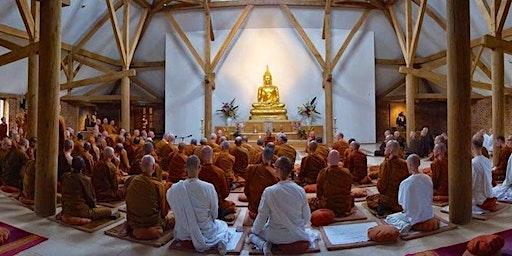 Intensive Vipassana with Ayya Vimala