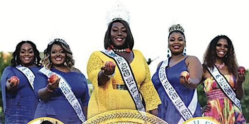Ms. Full Figured Georgia Pageant