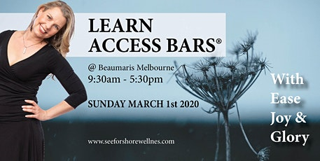 BECOME A CERTIFIED ACCESS BARS PRACTITIONER IN A DAY tickets