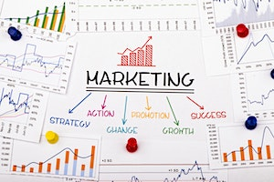 Marketing Strategies for Growth (Part of the Scale Up Masterclass Series)
