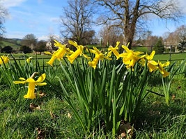 Hello, Spring! Free Guided Walk