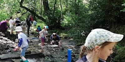 Stream Safari at Tegg's Nose Country Park