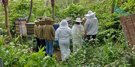 Introduction to Beekeeping Weekend Course tickets