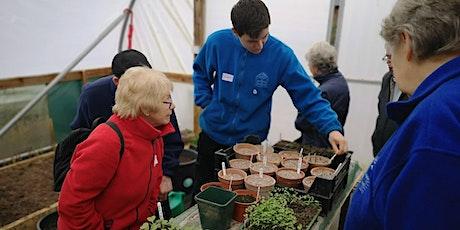 Tea & Trowels - Social gardening group tickets