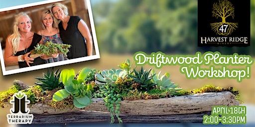 Driftwood Planter Workshop at Harvest Ridge Winery Marydel