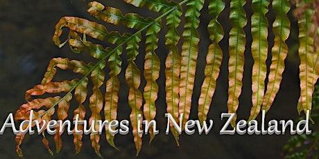 Frazier's Wine Tasting - Adventures in New Zealand tickets