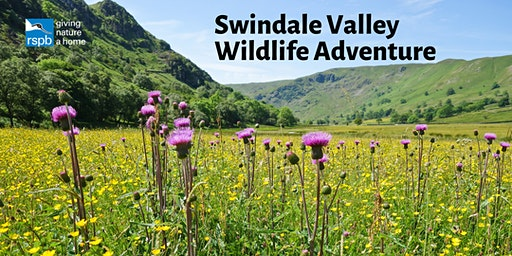 Swindale Valley Wildlife Adventure