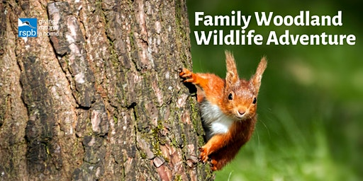 Wild Families: Woodland Wildlife Adventure
