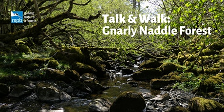 Talk & Walk : Gnarly Naddle Forest tickets