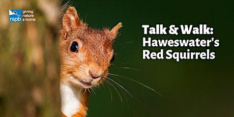 Talk & Walk : Haweswater's Red Squirrels tickets