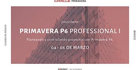 Primavera P6 Professional I (Básico) entradas