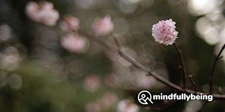 Mindfulness Non-Residential Weekend Retreat in Edinburgh tickets