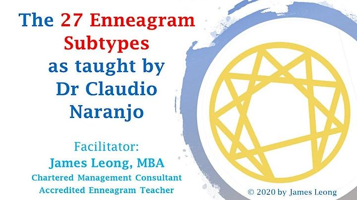 Claudio Naranjo's 27 Enneagram Subtypes image