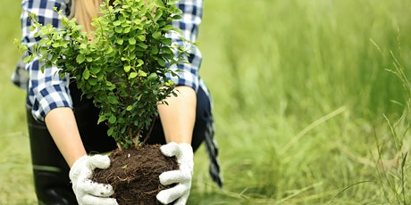 WITI Meeting (Women in the Industry) for women in the Landscaping Industry tickets