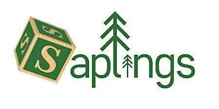 Saplings Spring Break
